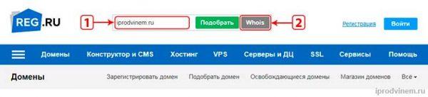 Reg ru определение возраста домена главная страница