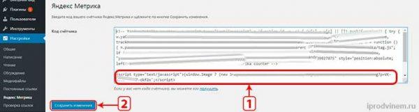 Evadav добавляем код на вордпресс в плагине яндекс метрики