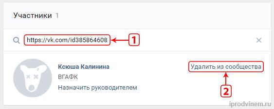 Удаляем подписчиков из группы Вконтакте