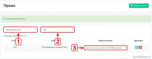 PushAds создаем ссылку на арбитраж во вкладке Промо