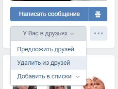 Удаляем пользователя из друзей Вконтакте через его профиль
