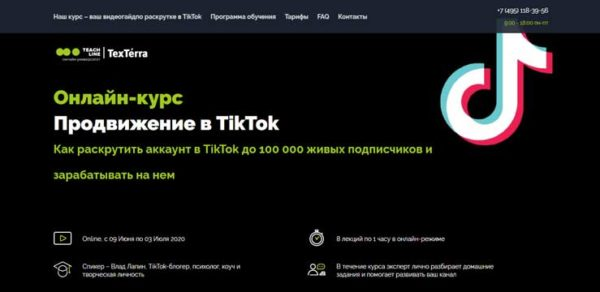 Курс Продвижение в TikTok от TexTerra