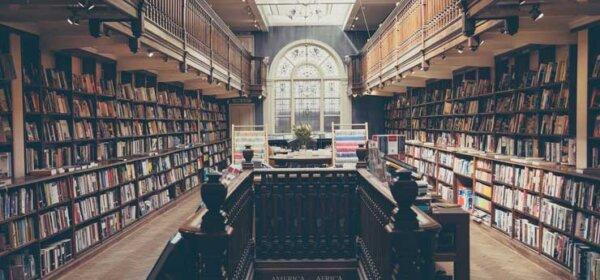 Обучение и получение новых знаний