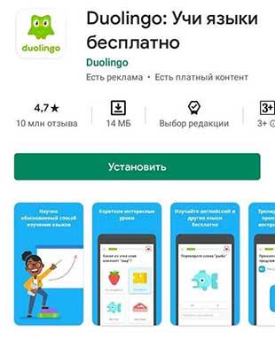 Приложение по изучению английского на телефоне Duolingo