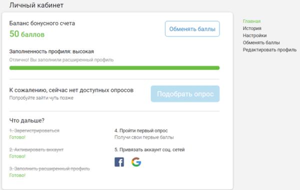 Интерфейс-InternetOpros - Главная страница