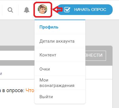 Интерфейс Toluna - раздел «Личный кабинет»