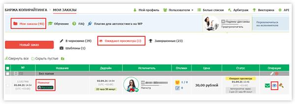 Поступление работы от исполнителя на бирже Text.ru
