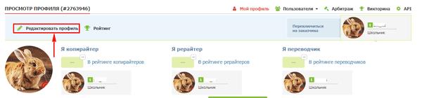 Заполнение профиля на бирже Text.ru